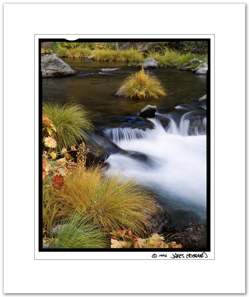 Deer-Creek-Grass-Lumps
