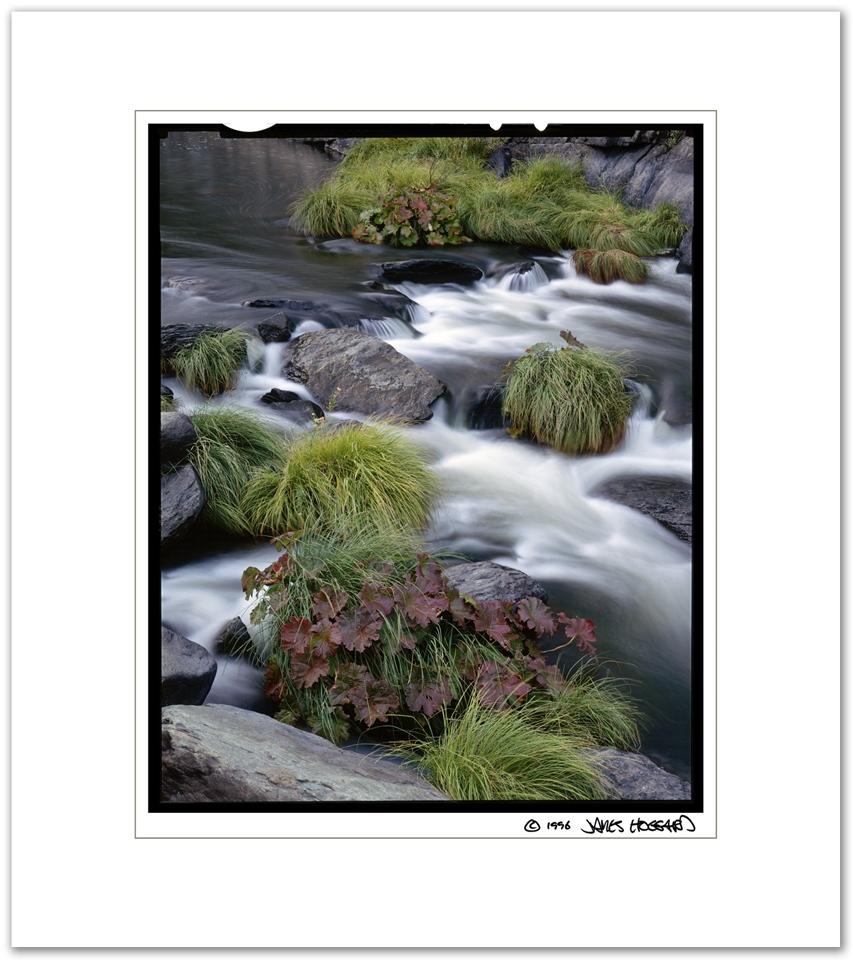 Indian-Creek-Rubarb-Rapid