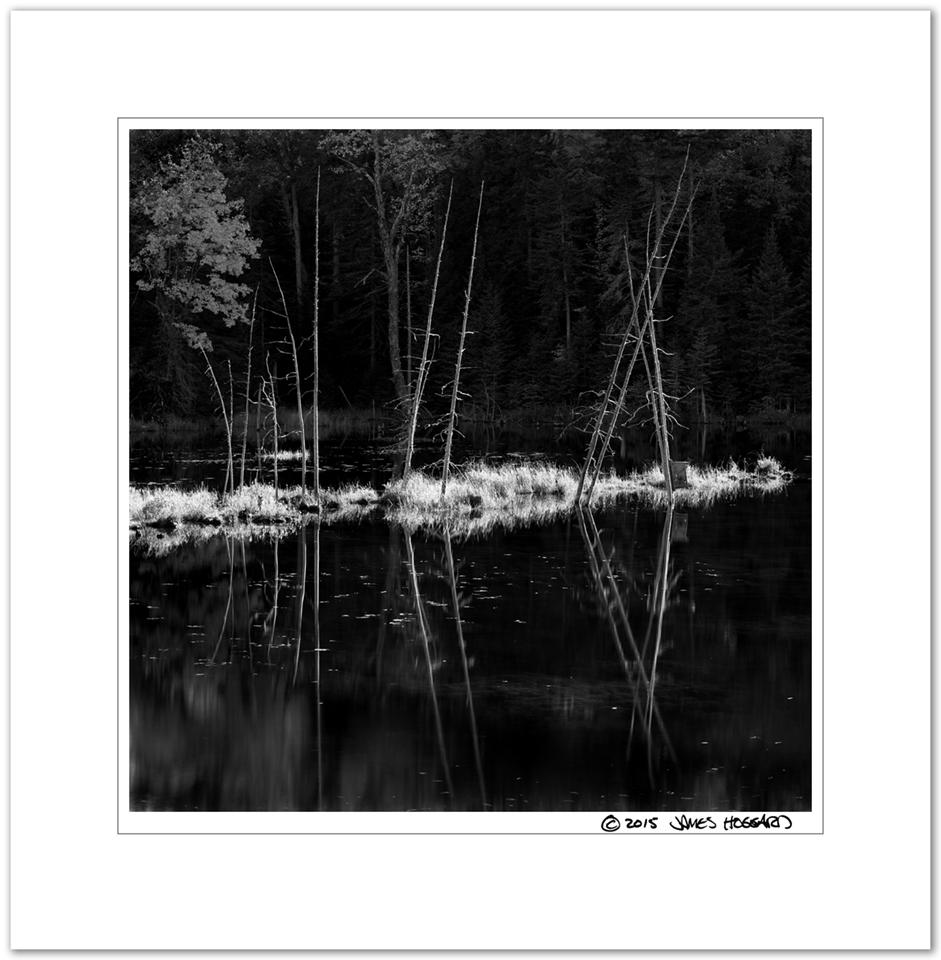 Newcomb-Roadside-Reflection2