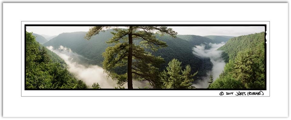 Pine-Creek-Gorge