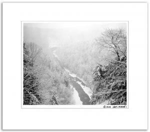 Deer_Lick_View,_Winter