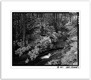 Fernow Creek BW2.jpg